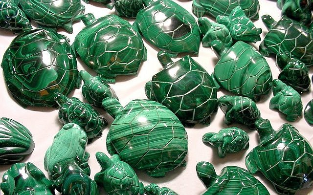 6malachite-turtles-jan-2005-26